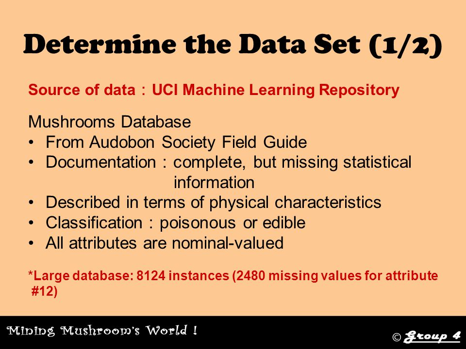 Determine the Data Set (1/2) Source of data : UCI Machine Learning Repository Mushrooms Database From Audobon Society Field Guide Documentation : complete, but missing statistical information Described in terms of physical characteristics Classification : poisonous or edible All attributes are nominal-valued *Large database: 8124 instances (2480 missing values for attribute #12)