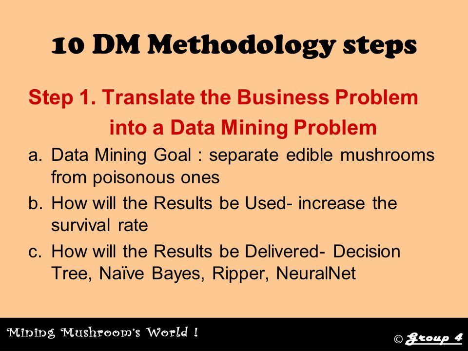 10 DM Methodology steps Step 6.