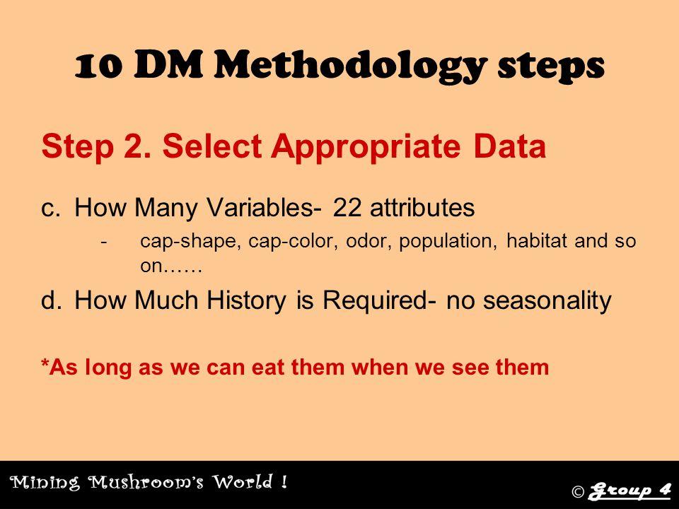 10 DM Methodology steps Step 3.
