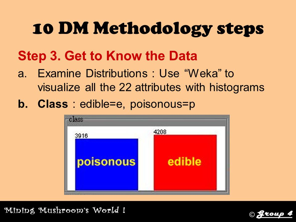 10 DM Methodology steps Step 3.