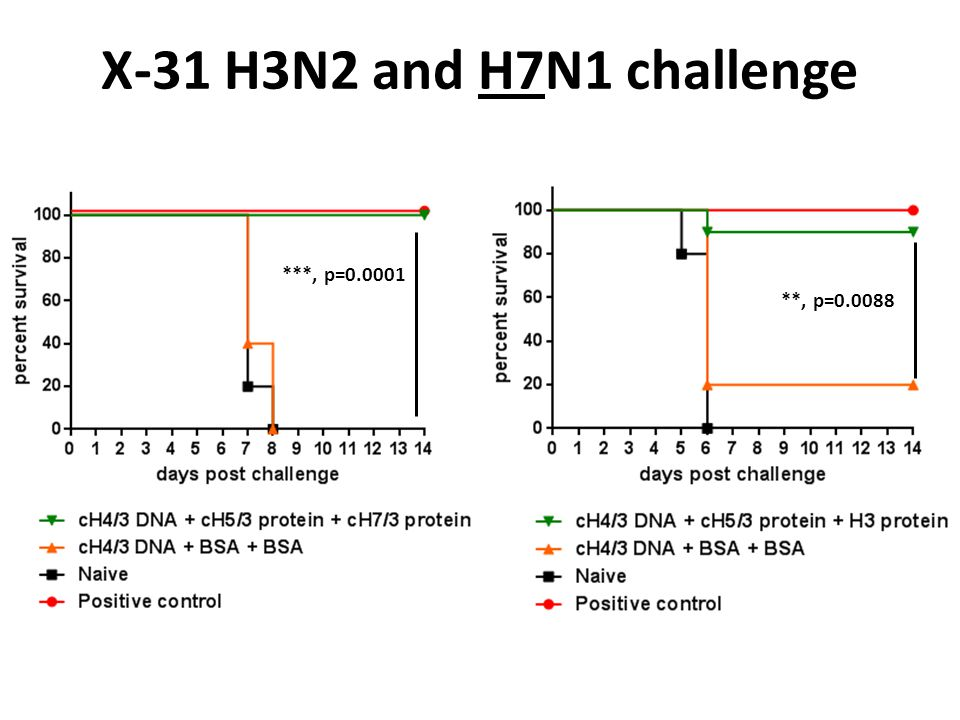 X-31 H3N2 and H7N1 challenge ***, p=0.0001 **, p=0.0088