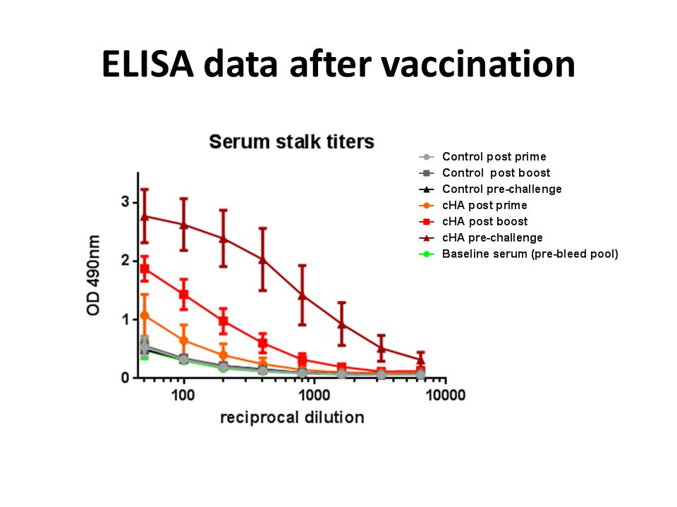 ELISA data after vaccination