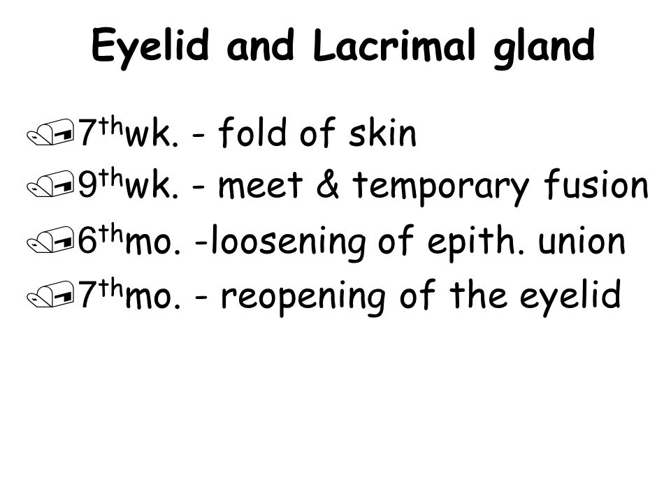 Eyelid and Lacrimal gland /7 th wk.- fold of skin /9 th wk.