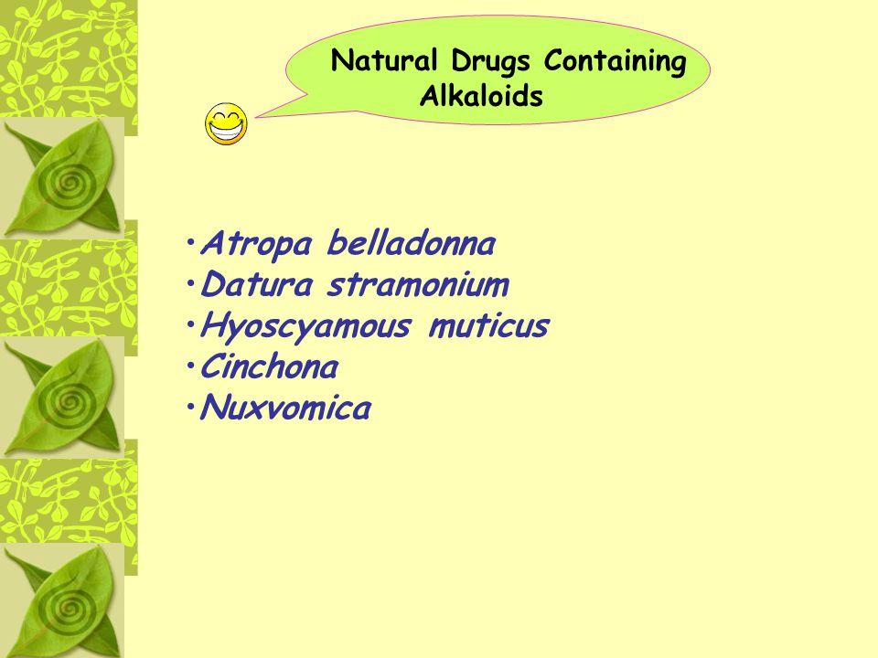 Natural Drugs Containing Alkaloids Atropa belladonna Datura stramonium Hyoscyamous muticus Cinchona Nuxvomica