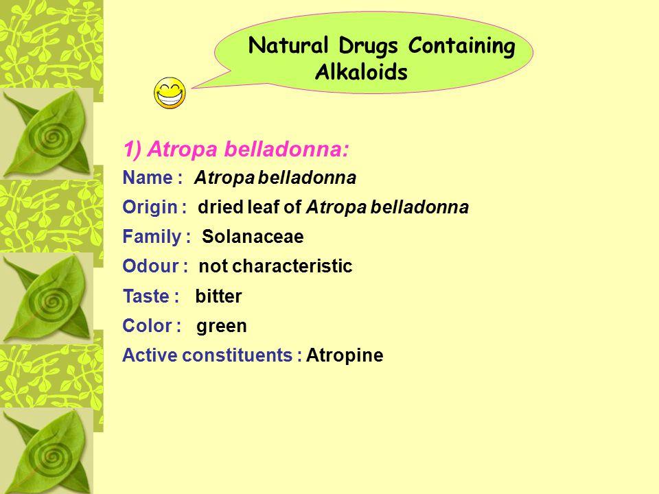 Natural Drugs Containing Alkaloids 1) Atropa belladonna: Name : Atropa belladonna Origin : dried leaf of Atropa belladonna Family : Solanaceae Odour :