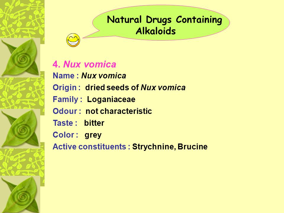Natural Drugs Containing Alkaloids 4. Nux vomica Name : Nux vomica Origin : dried seeds of Nux vomica Family : Loganiaceae Odour : not characteristic