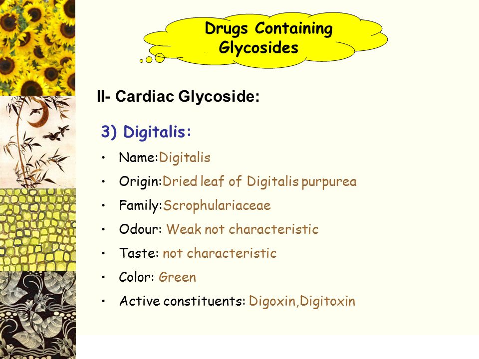 Drugs Containing. Glycosides II- Cardiac Glycoside: 3) Digitalis: Name:Digitalis Origin:Dried leaf of Digitalis purpurea Family:Scrophulariaceae Odour