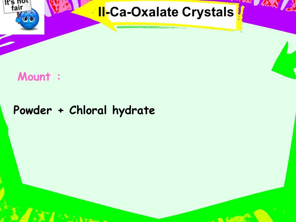 Mount : Powder + Chloral hydrate