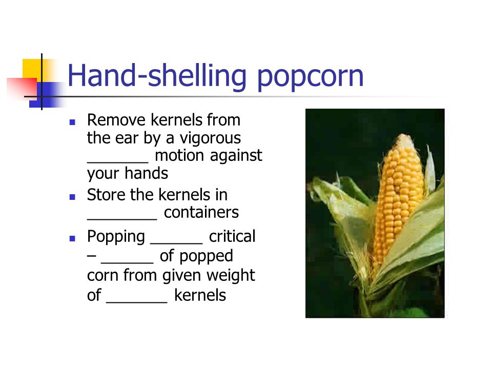 Hand-shelling popcorn Remove kernels from the ear by a vigorous _______ motion against your hands Store the kernels in ________ containers Popping ______ critical – ______ of popped corn from given weight of _______ kernels