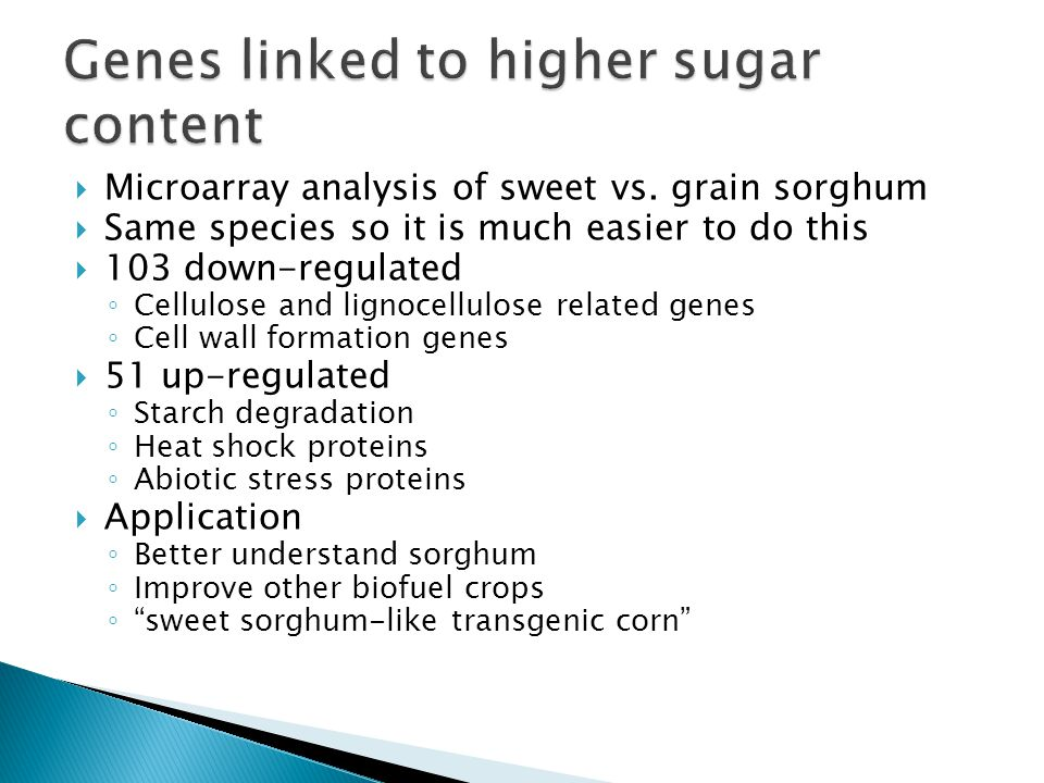  Microarray analysis of sweet vs. grain sorghum  Same species so it is much easier to do this  103 down-regulated ◦ Cellulose and lignocellulose re