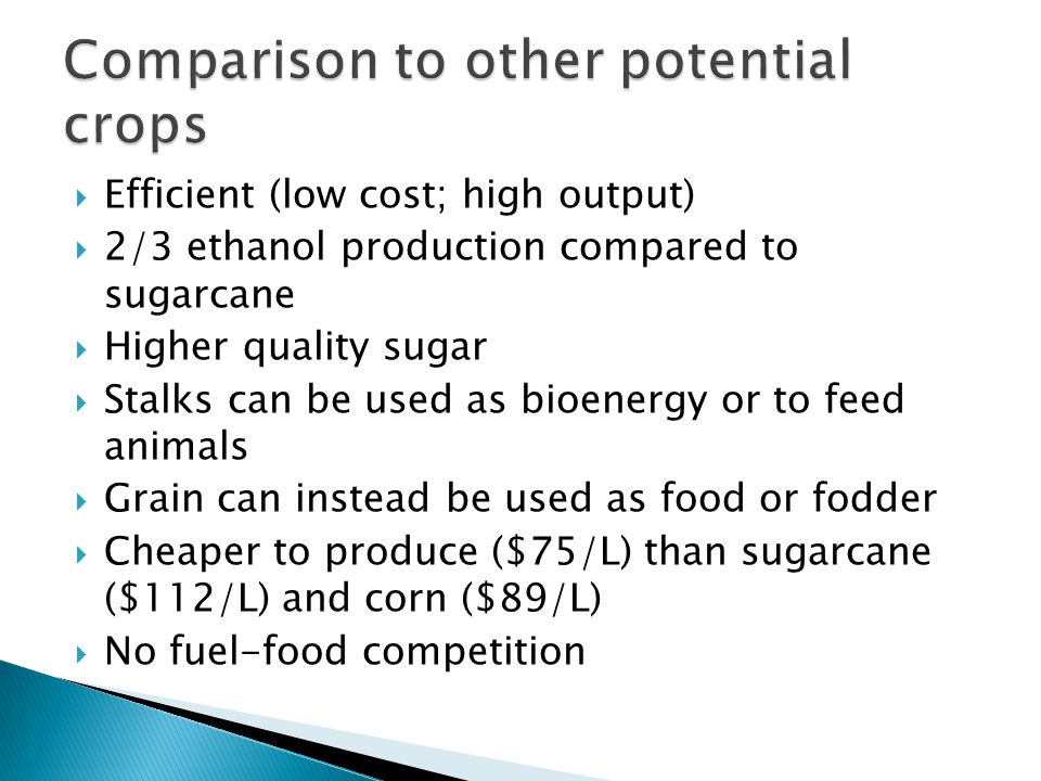  Efficient (low cost; high output)  2/3 ethanol production compared to sugarcane  Higher quality sugar  Stalks can be used as bioenergy or to feed