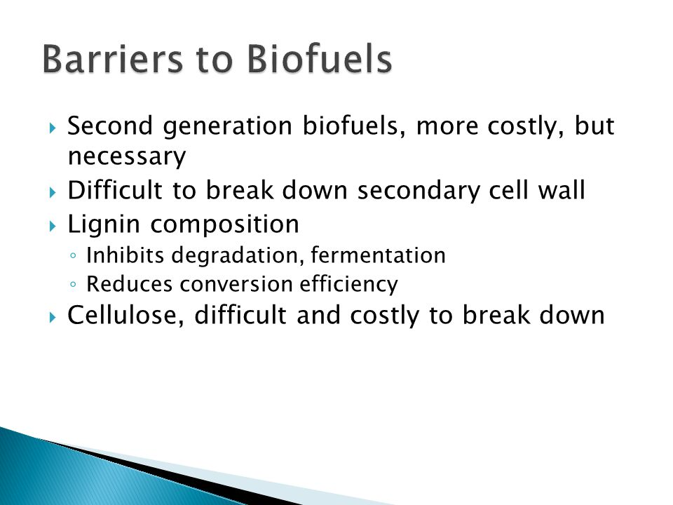  Second generation biofuels, more costly, but necessary  Difficult to break down secondary cell wall  Lignin composition ◦ Inhibits degradation, fe
