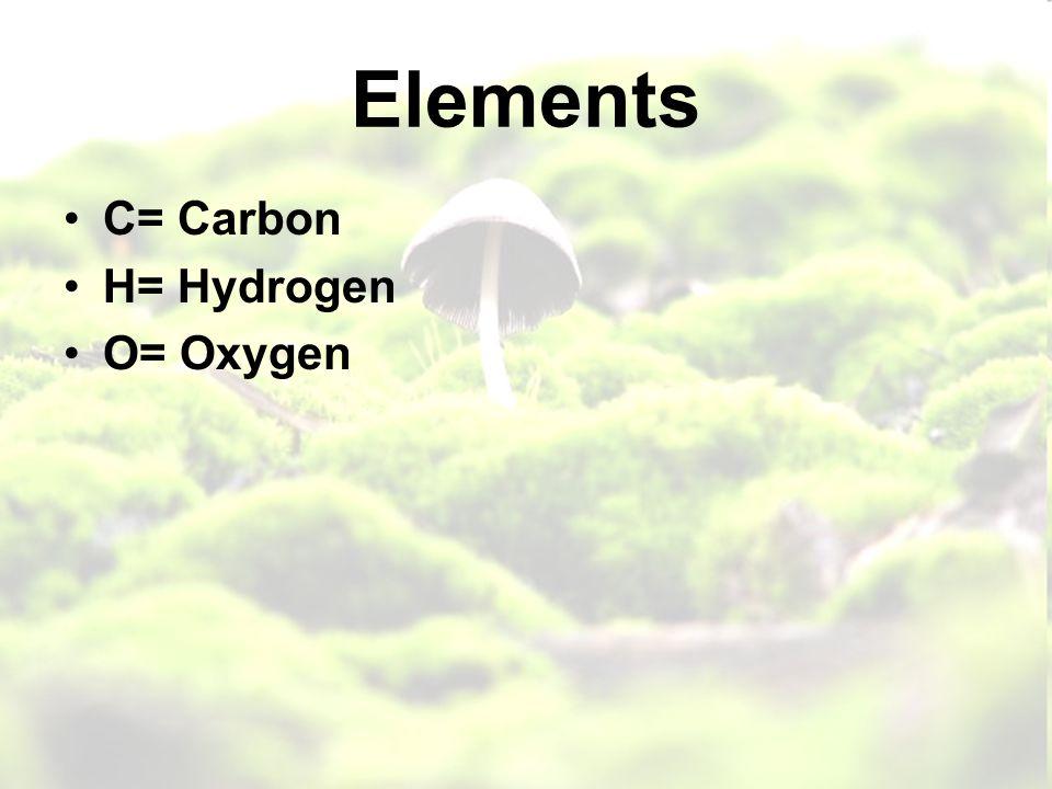 Elements C= Carbon H= Hydrogen O= Oxygen