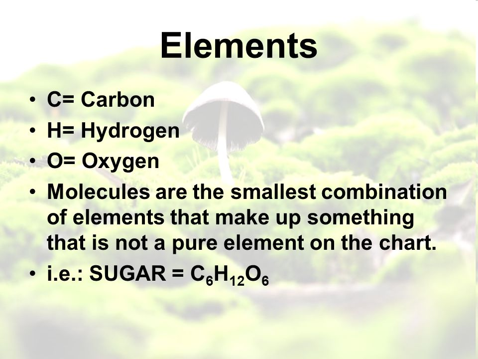 Elements C= Carbon H= Hydrogen O= Oxygen Molecules are the smallest combination of elements that make up something that is not a pure element on the chart.