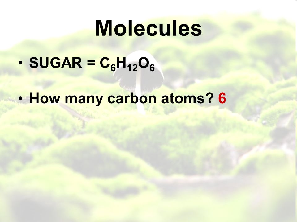 Molecules SUGAR = C 6 H 12 O 6 How many carbon atoms 6