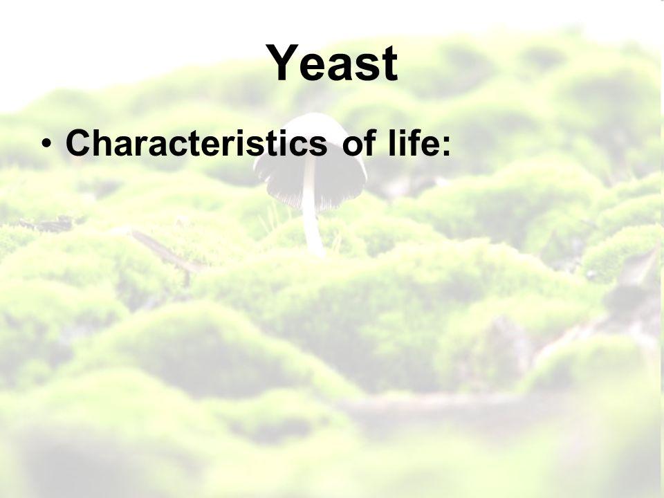 Yeast Characteristics of life: