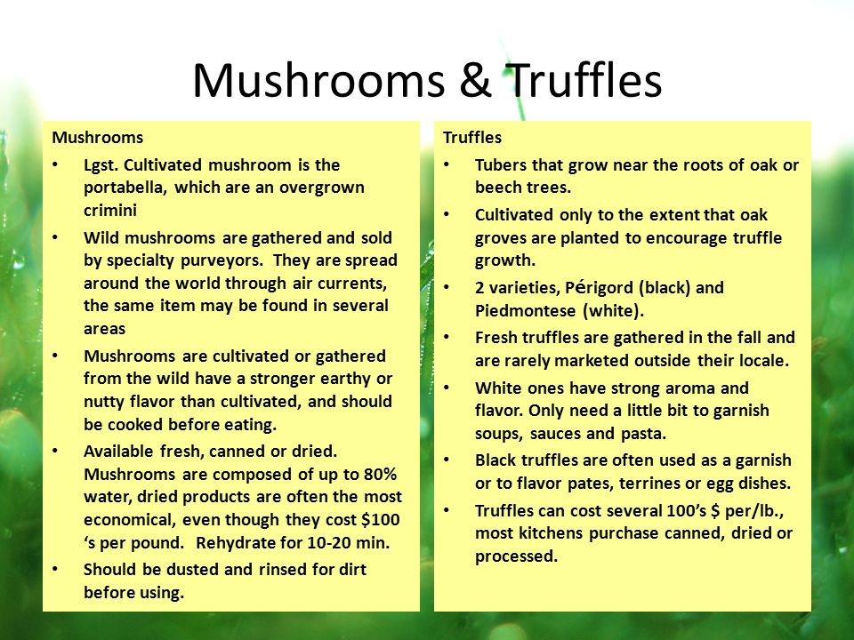 Mushrooms & Truffles Mushrooms Lgst. Cultivated mushroom is the portabella, which are an overgrown crimini Wild mushrooms are gathered and sold by spe