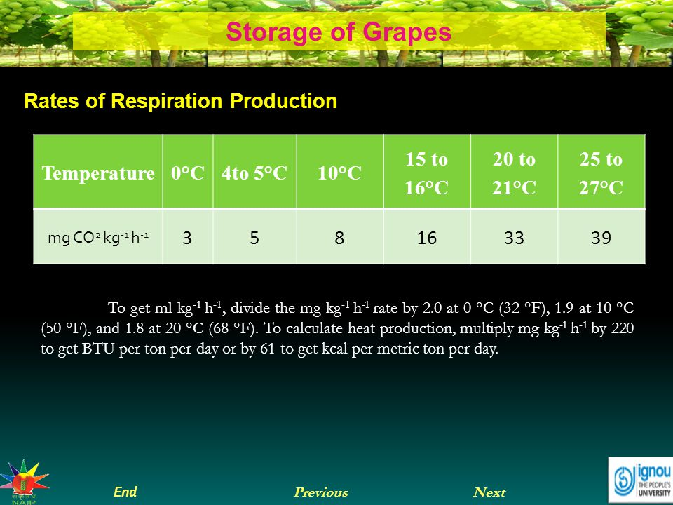 Next End Previous Storage of Grapes Rates of Respiration Production Temperature0°C4to 5°C10°C 15 to 16°C 20 to 21°C 25 to 27°C mg CO 2 kg -1 h -1 358163339 To get ml kg -1 h -1, divide the mg kg -1 h -1 rate by 2.0 at 0 °C (32 °F), 1.9 at 10 °C (50 °F), and 1.8 at 20 °C (68 °F).