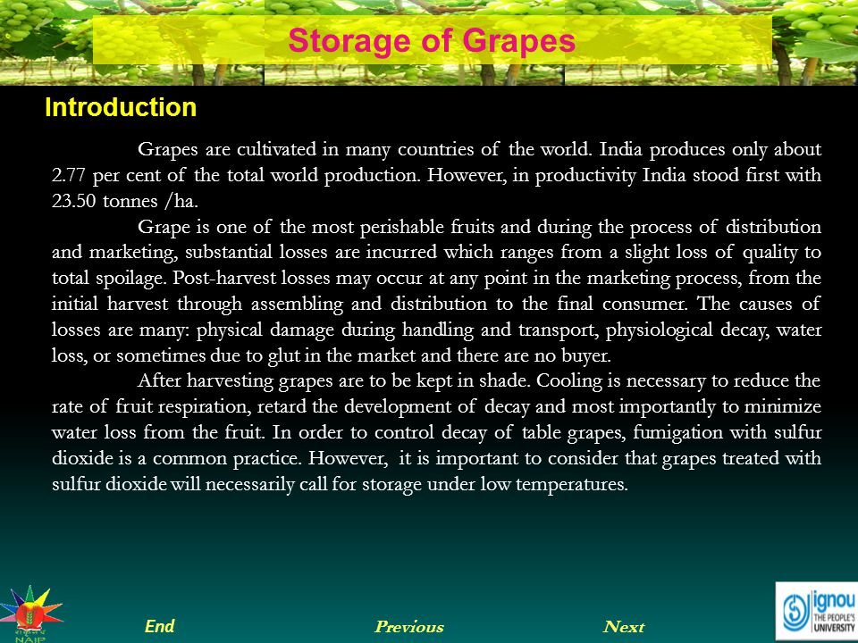 Next End Previous Storage of Grapes Introduction Grapes are cultivated in many countries of the world.