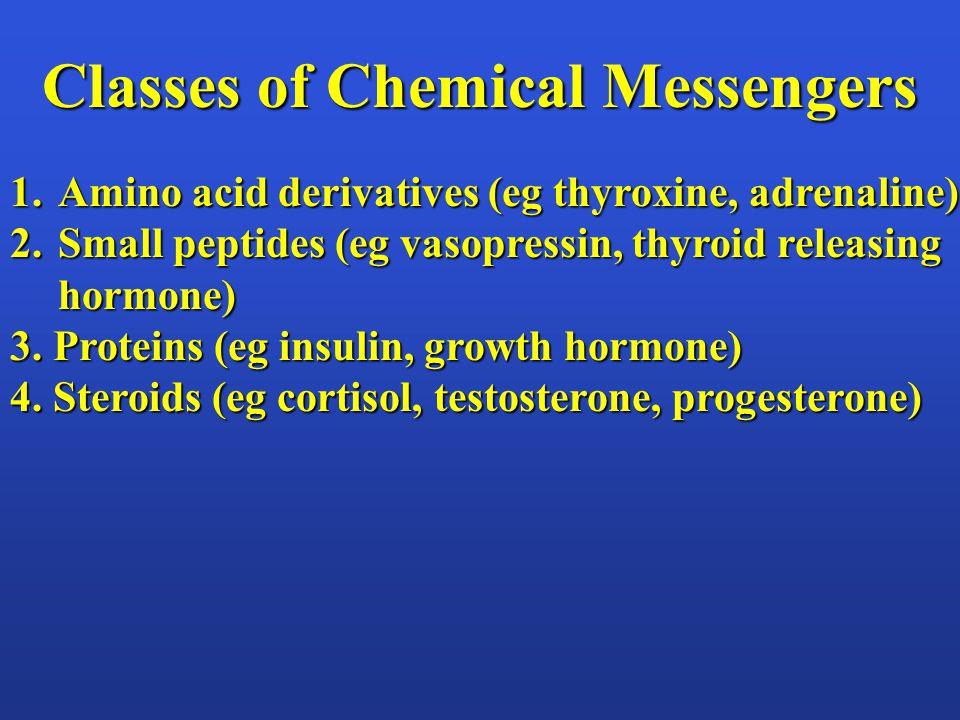 Classes of Chemical Messengers 1.Amino acid derivatives (eg thyroxine, adrenaline) 2.Small peptides (eg vasopressin, thyroid releasing hormone) 3. Pro