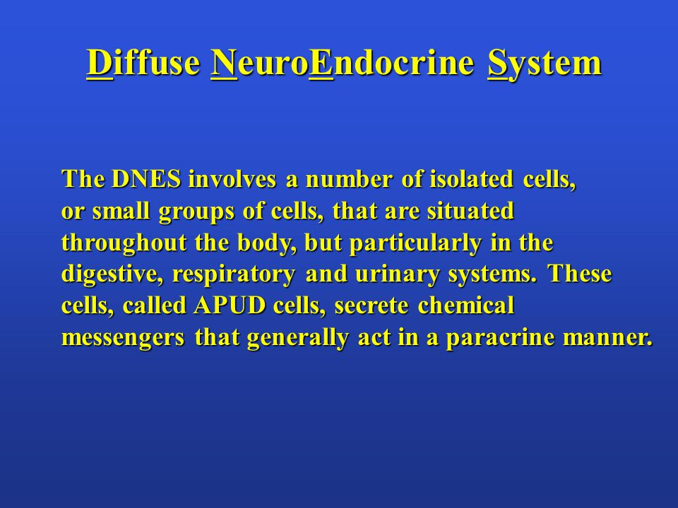 Diffuse NeuroEndocrine System The DNES involves a number of isolated cells, or small groups of cells, that are situated throughout the body, but particularly in the digestive, respiratory and urinary systems.