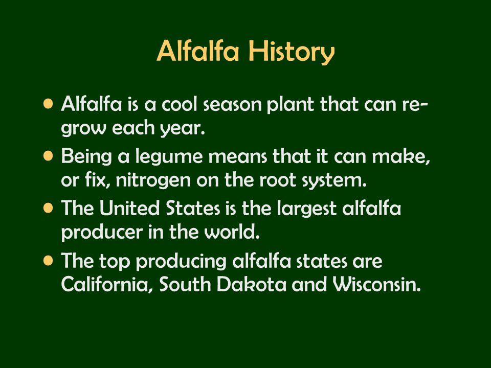 Alfalfa History Alfalfa is a cool season plant that can re- grow each year. Being a legume means that it can make, or fix, nitrogen on the root system