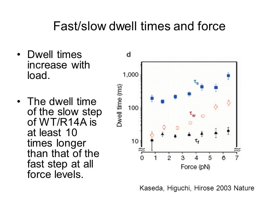 Fast/slow dwell times and force Dwell times increase with load. The dwell time of the slow step of WT/R14A is at least 10 times longer than that of th