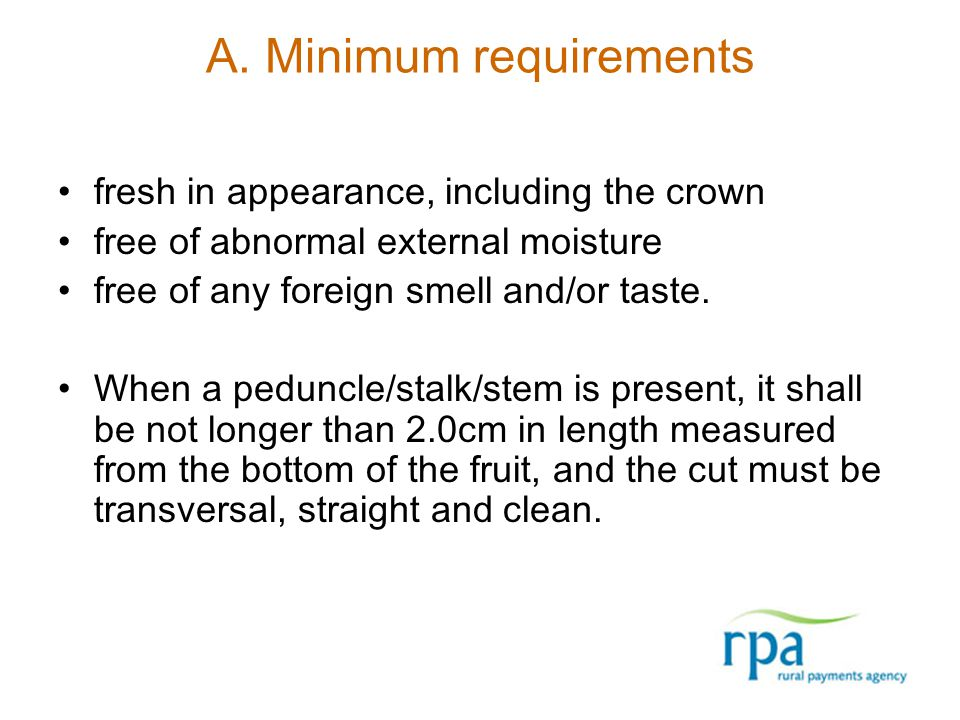 A. Minimum requirements fresh in appearance, including the crown free of abnormal external moisture free of any foreign smell and/or taste. When a ped