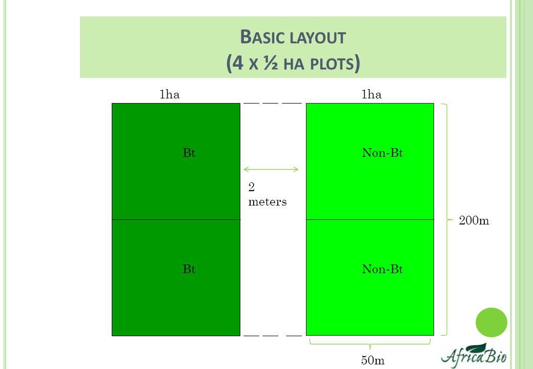 B ASIC LAYOUT (4 X ½ HA PLOTS ) Bt Non-Bt 2 meters 1ha 50m 200m