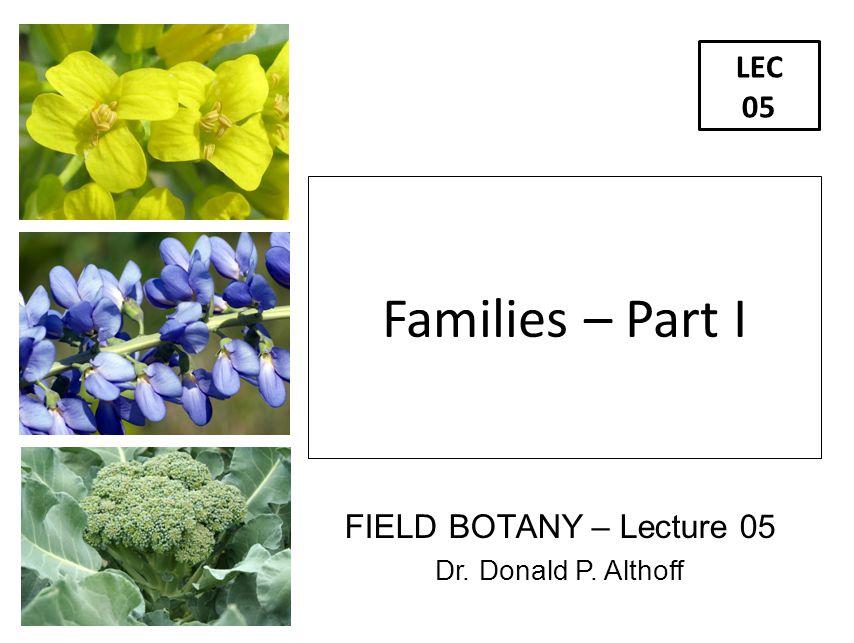 FIELD BOTANY – Lecture 05 Dr. Donald P. Althoff LEC 05 Families – Part I