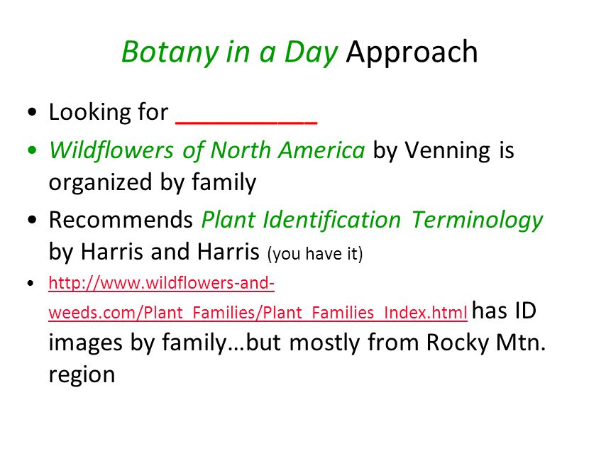 Botany in a Day Approach Looking for ___________ Wildflowers of North America by Venning is organized by family Recommends Plant Identification Terminology by Harris and Harris (you have it) http://www.wildflowers-and- weeds.com/Plant_Families/Plant_Families_Index.html has ID images by family…but mostly from Rocky Mtn.