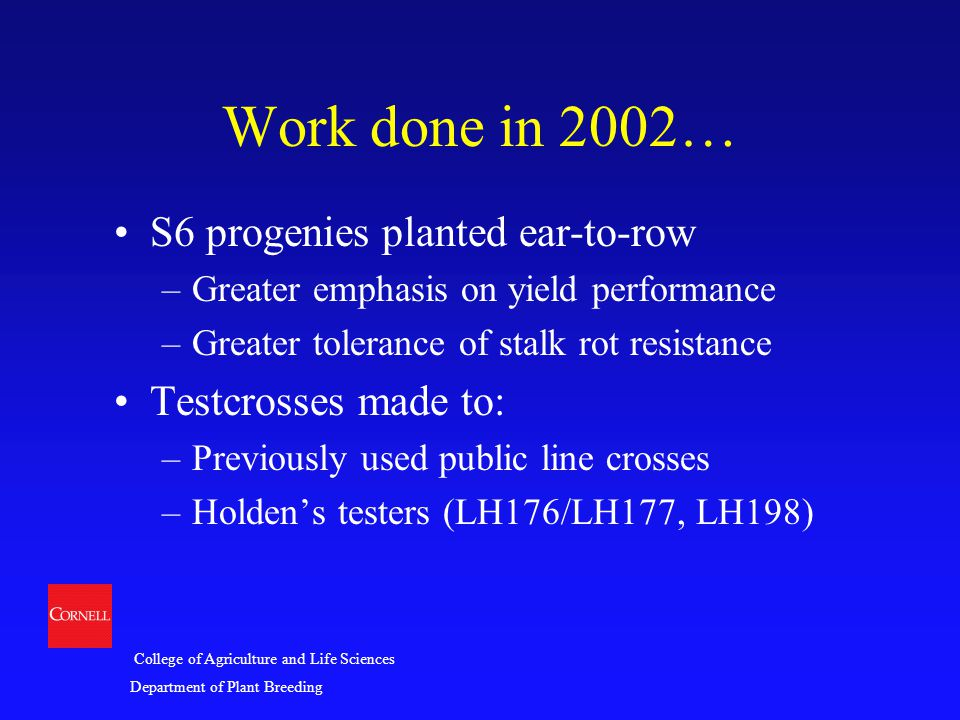 College of Agriculture and Life Sciences Department of Plant Breeding Work done in 2002… S6 progenies planted ear-to-row –Greater emphasis on yield pe