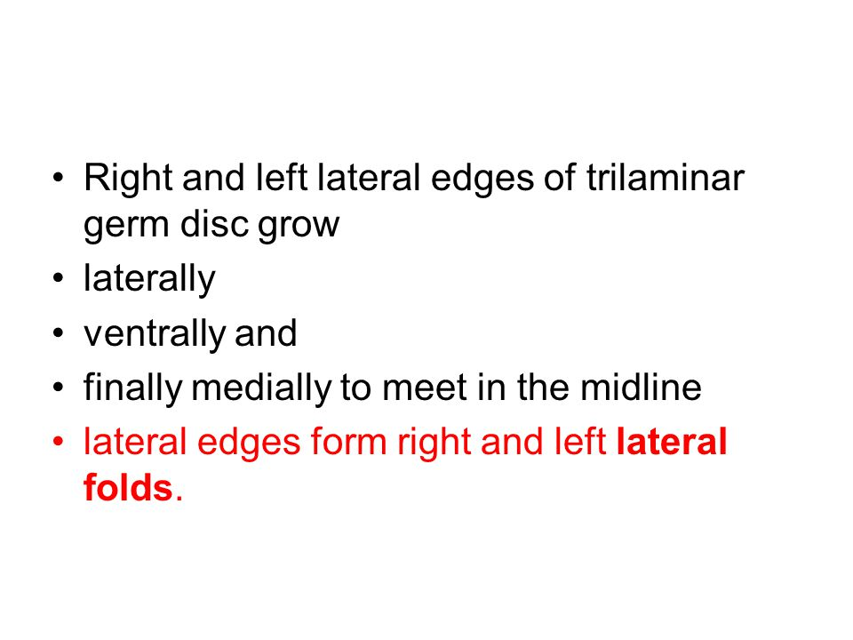 Right and left lateral edges of trilaminar germ disc grow laterally ventrally and finally medially to meet in the midline lateral edges form right and