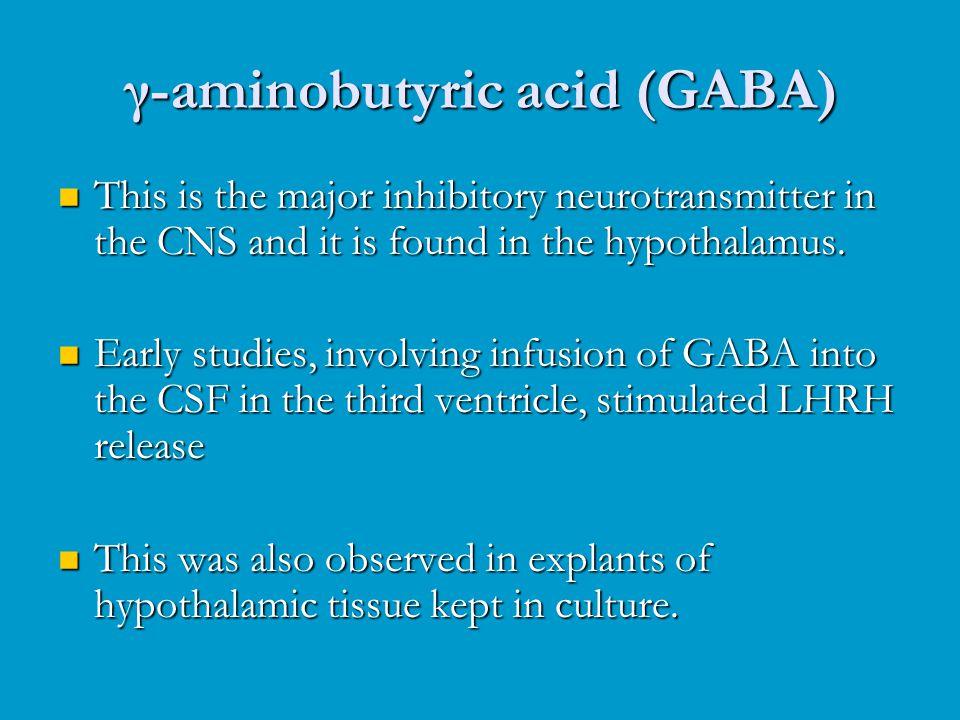 γ-aminobutyric acid (GABA) This is the major inhibitory neurotransmitter in the CNS and it is found in the hypothalamus. This is the major inhibitory
