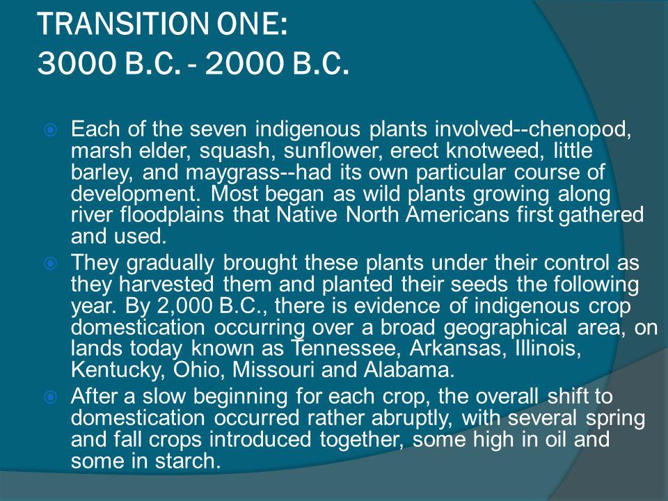 TRANSITION ONE: 3000 B.C.- 2000 B.C.