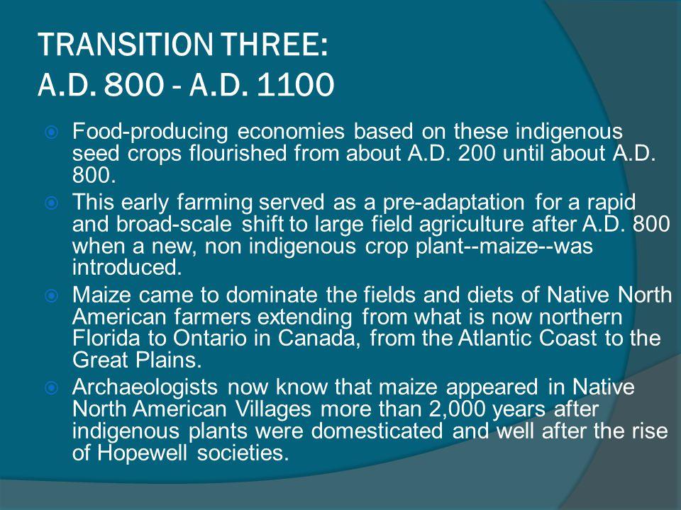 TRANSITION THREE: A.D.800 - A.D.
