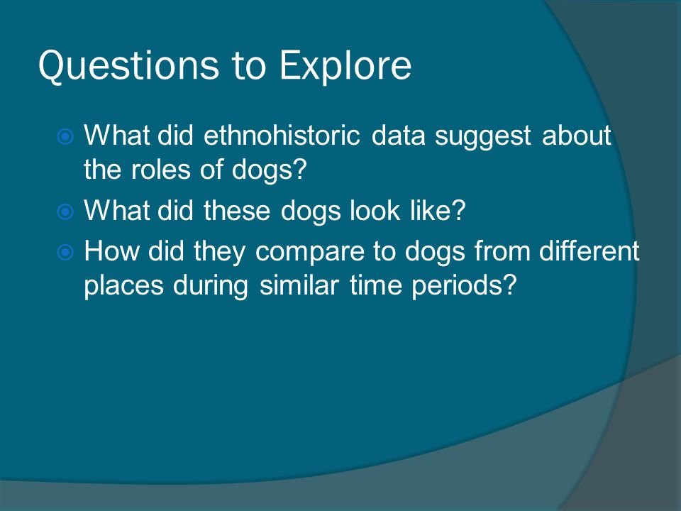 Questions to Explore  What did ethnohistoric data suggest about the roles of dogs.