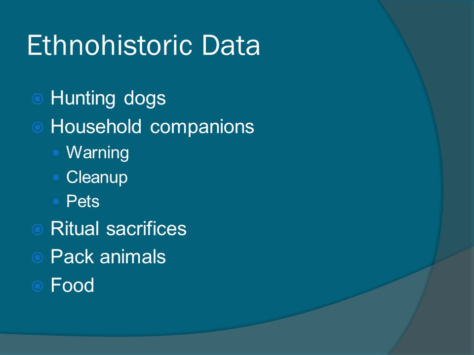Ethnohistoric Data  Hunting dogs  Household companions Warning Cleanup Pets  Ritual sacrifices  Pack animals  Food