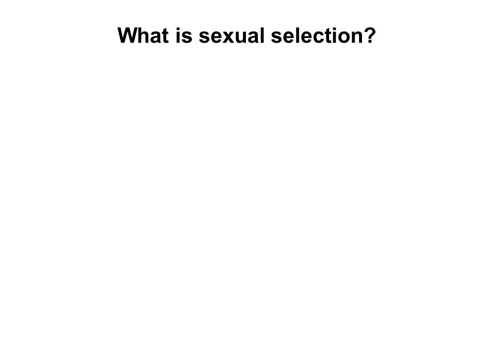 What is sexual selection.