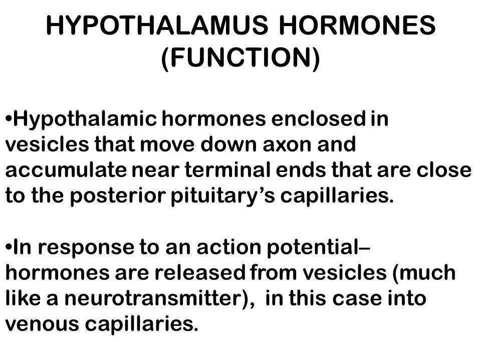 ADRENAL GLAND Adrenal Cortex, Function : MINERALOCORTICOIDS – regulate sodium retention and potassium loss.