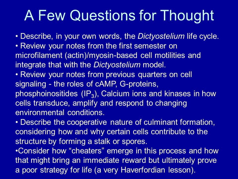 A Few Questions for Thought Describe, in your own words, the Dictyostelium life cycle.