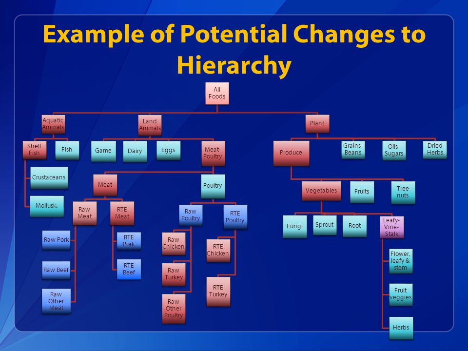 Example of Potential Changes to Hierarchy All Foods Plant Dried Herbs Oils- Sugars Grains- Beans Produce Tree nuts Fruits Vegetables Leafy- Vine- Stalk Flower, leafy & stem Herbs Fruit veggies Root Sprout Fungi Land Animals Meat- Poultry Poultry RTE Poultry RTE Chicken RTE Turkey Raw Poultry Raw Chicken Raw Turkey Raw Other Poultry Meat RTE Meat RTE Pork RTE Beef Raw Meat Raw Pork Raw Beef Raw Other Meat Eggs Dairy Game Aquatic Animals Fish Shell Fish Crustaceans Mollusk s