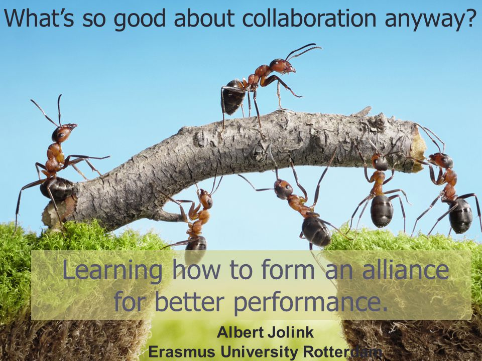 Learning how to form an alliance for better performance. Albert Jolink Erasmus University Rotterdam What's so good about collaboration anyway?