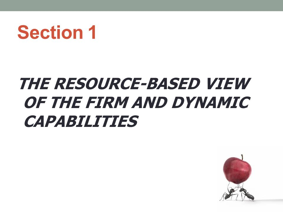 Dynamic Capabilities/Some definitions We define dynamic capabilities as the firm's ability to integrate, build, and reconfigure internal and external competences to address rapidly changing environments'.