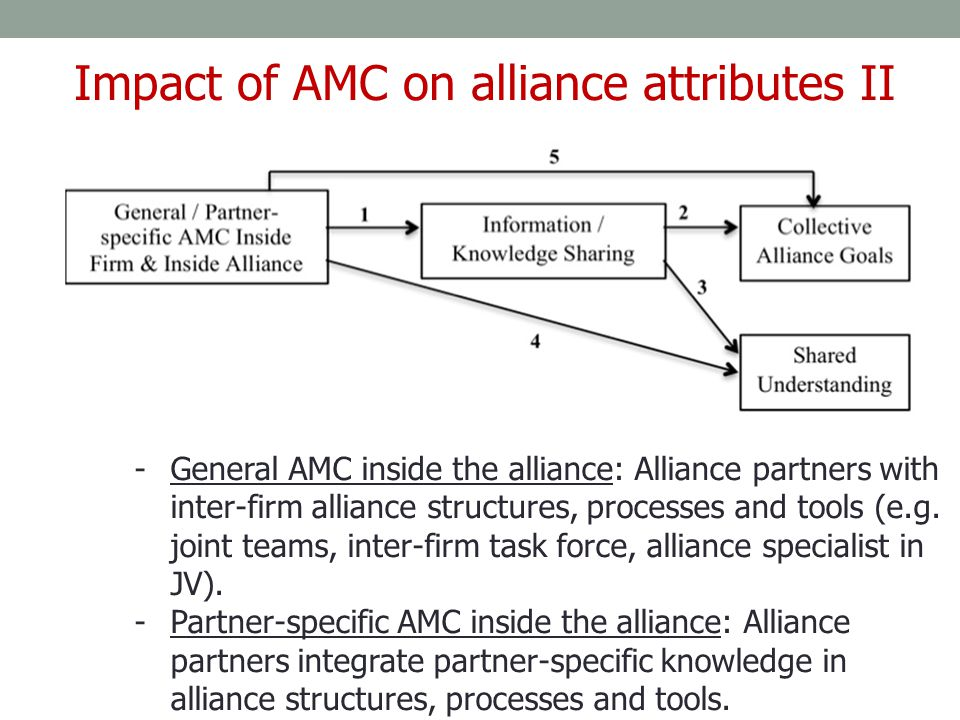 -General AMC inside the alliance: Alliance partners with inter-firm alliance structures, processes and tools (e.g. joint teams, inter-firm task force,