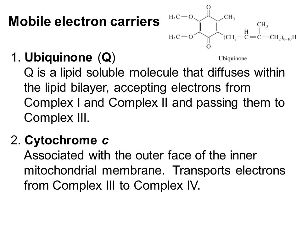 Mobile electron carriers 1.