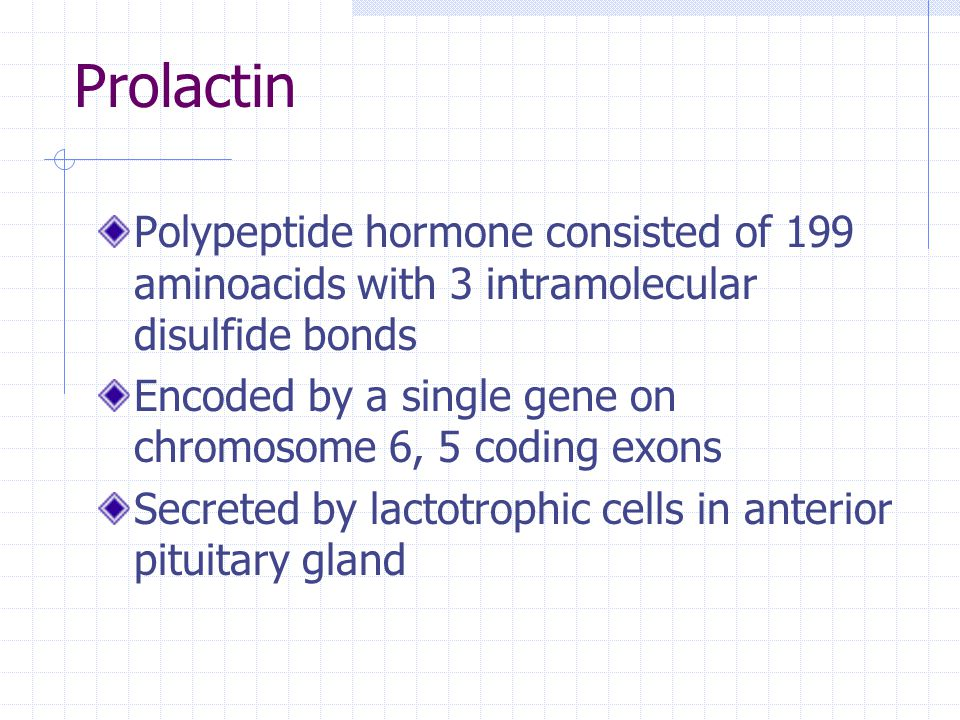 Prolactin Polypeptide hormone consisted of 199 aminoacids with 3 intramolecular disulfide bonds Encoded by a single gene on chromosome 6, 5 coding exo