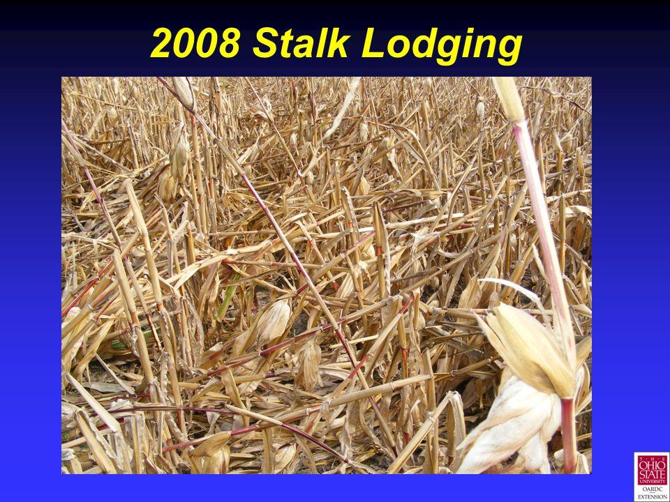 2008 Stalk Lodging