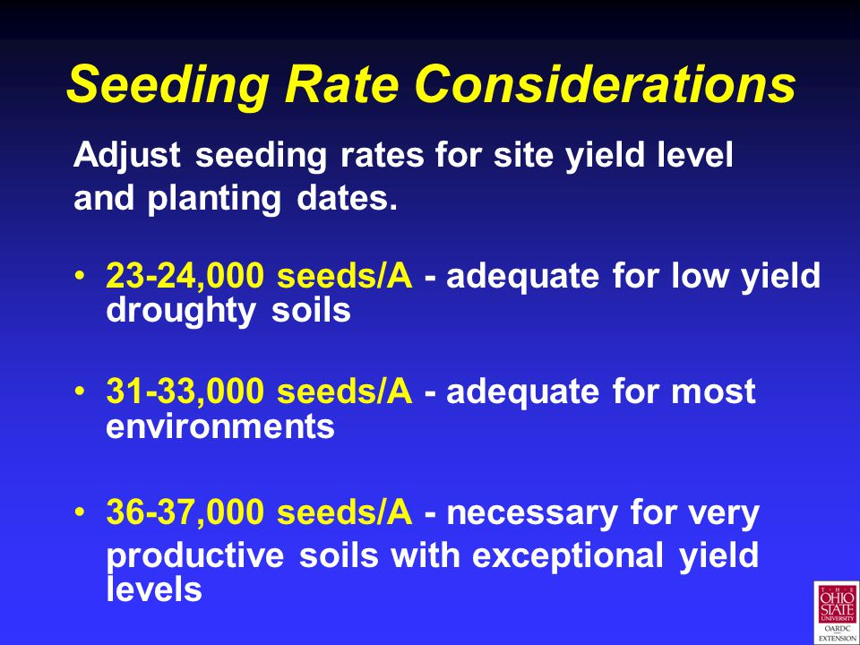 Seeding Rate Considerations Adjust seeding rates for site yield level and planting dates. 23-24,000 seeds/A - adequate for low yield droughty soils 31