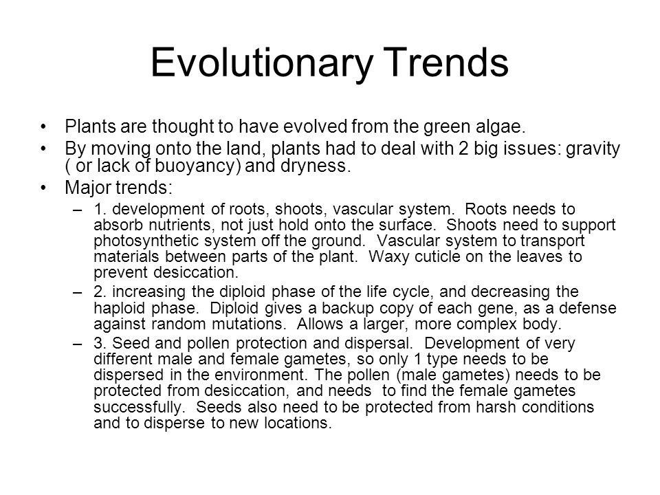 Evolutionary Trends Plants are thought to have evolved from the green algae. By moving onto the land, plants had to deal with 2 big issues: gravity (